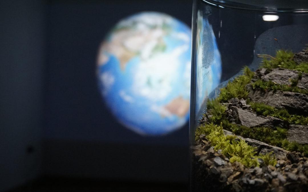 a Pescara la mostra sulle origini del mondo e dell'uomo